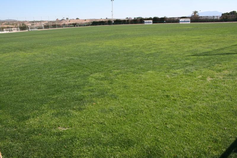 """El Lorca Fútbol Club, de Segunda División A, acomete y financia los trabajos de resiembra del campo de césped natural del Polideportivo Municipal """"6 de Diciembre"""""""