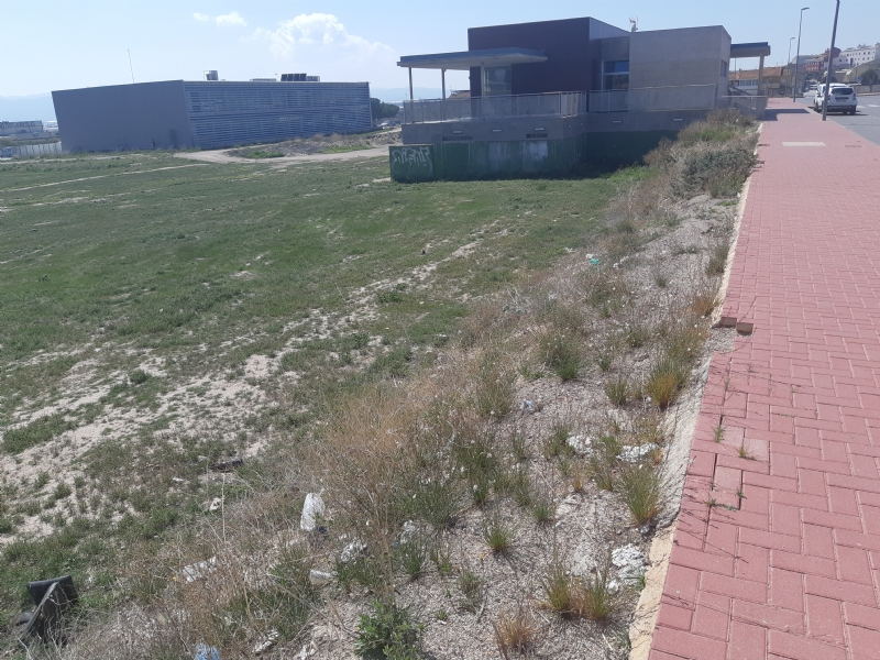 El Ayuntamiento pone a disposición de la Consejería de Educación terrenos municipales para la posible creación y apertura de instalaciones educativas en el futuro