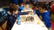 Récord de participación en la Fase Local de Ajedrez de Deporte Escolar, organizada por la Concejalía de Deportes y el Club de Ajedrez, con un total de 84 escolares - Foto 4