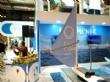 Vídeo. Totana presenta su oferta turística en FITUR dentro del expositor de la Mancomunidad de Sierra Espuña, ofreciendo visitas al yacimiento La Bastida, la Torre de Santiago y La Santa - Foto 11