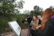 """Vídeo. La presidenta de la Asamblea Regional realiza una visita a """"La Bastida"""" instando a los organismos con capacidad de gestión a que inviertan en este proyecto de investigación  y musealización - Foto 24"""