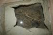 Vídeo. La réplica de la Casa Argárica impulsará el yacimiento arqueológico de La Bastida y permitirá que los visitantes del poblado comprendan mejor el estilo de vida de la Edad de Bronce - Foto 22
