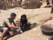 VÍDEO. Las excavaciones en el yacimiento arqueológico de La Bastida arrancan de nuevo con el apoyo de National Geographic Society - Foto 13