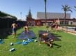"""Un total de 150 niños y niñas participan esta quincena del Campus de Verano en el Polideportivo """"6 de Diciembre"""" y el Complejo Polideportivo """"Valle del Guadalentín"""", en El Paretón - Foto 1"""