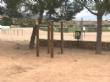 """La Concejalía de Deportes sustituye las máquinas y aparatos deportivos al aire libre del Polideportivo Municipal """"6 de Diciembre"""" - Foto 2"""