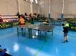 El Colegio La Milagrosa consigue el primer puesto en la Final Regional de Tenis de Mesa de Deporte Escolar, celebrada en Mazarrón - Foto 6